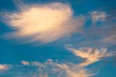 Sicheres verteiltes rechnen cloud computing grid computing service